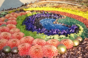 ziedu-paklajs